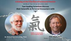 Qigong-Tai-Chi-Online-Summit-16-01-2021